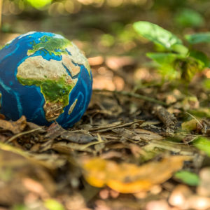 Toy globe in nature